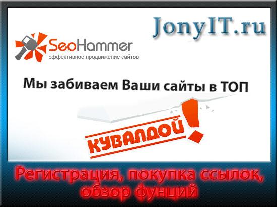 Обзор сервиса seohammer